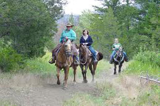 Mountain View Horseback Trail Ride Package